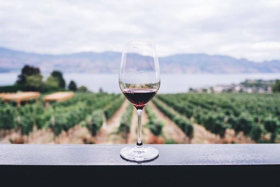 Опитування: Італія – найкраща країна-виробник вина у світі