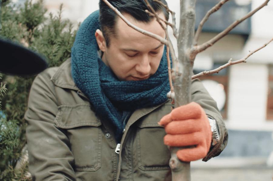 Хто переміг на першому конкурсі Tahona Society в Україні